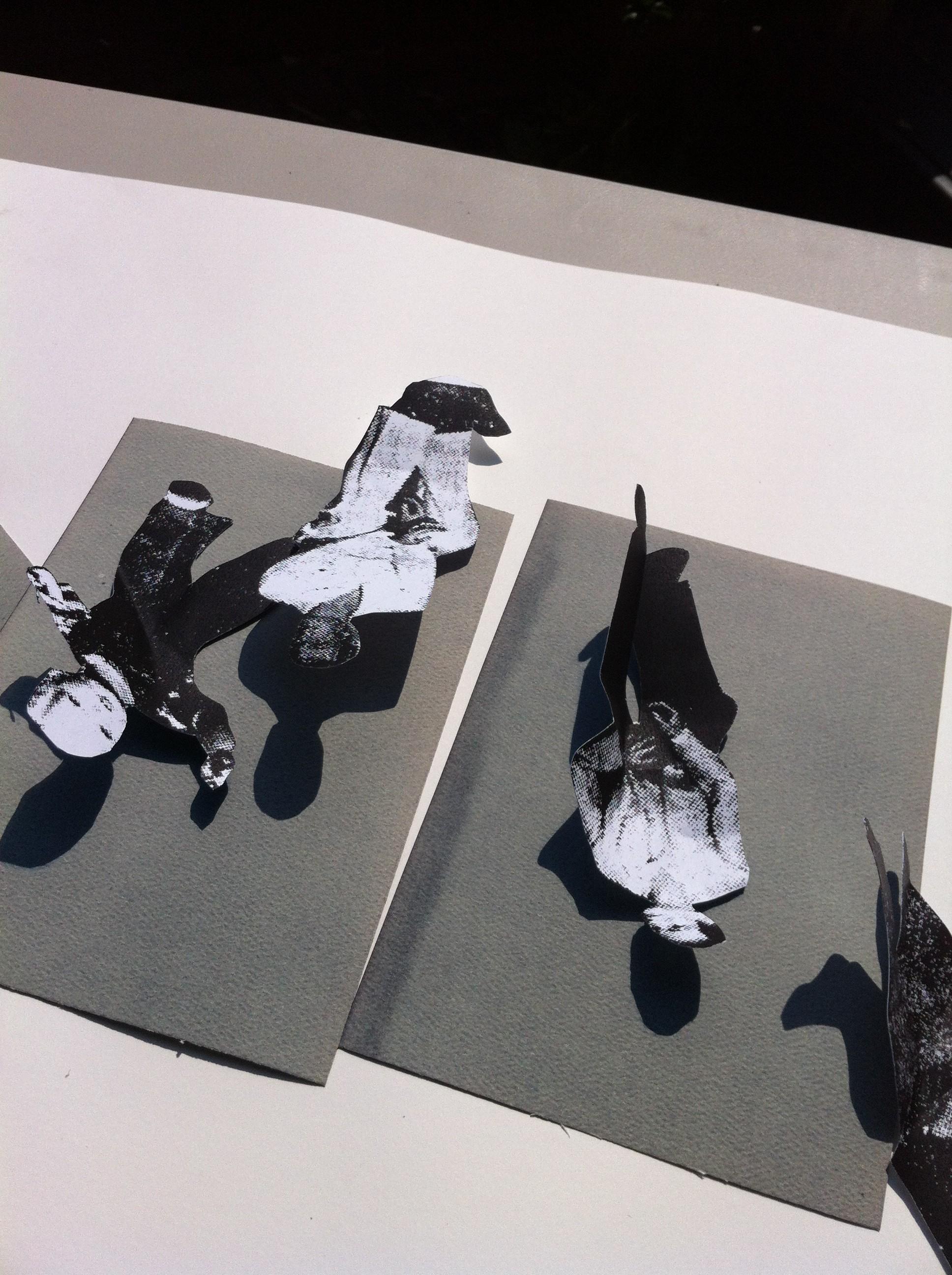 sun prints process 4